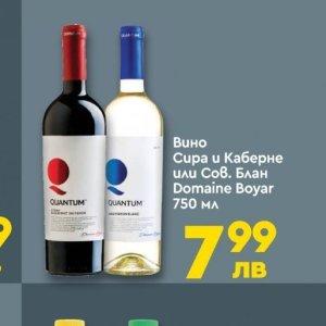 Вино в Про Маркет