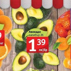 Авокадо в Фантастико