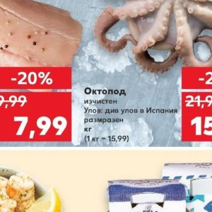 Октопод в Kaufland хипермаркет