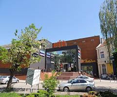 Мол Видин