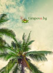 Брошура Grupovo.bg Завет
